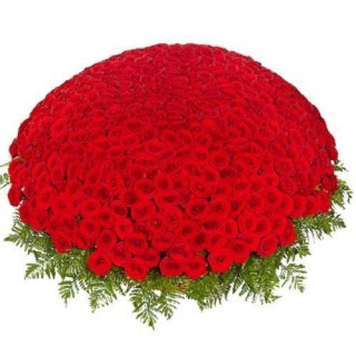 Купить на заказ 301  роза с доставкой в Аксу